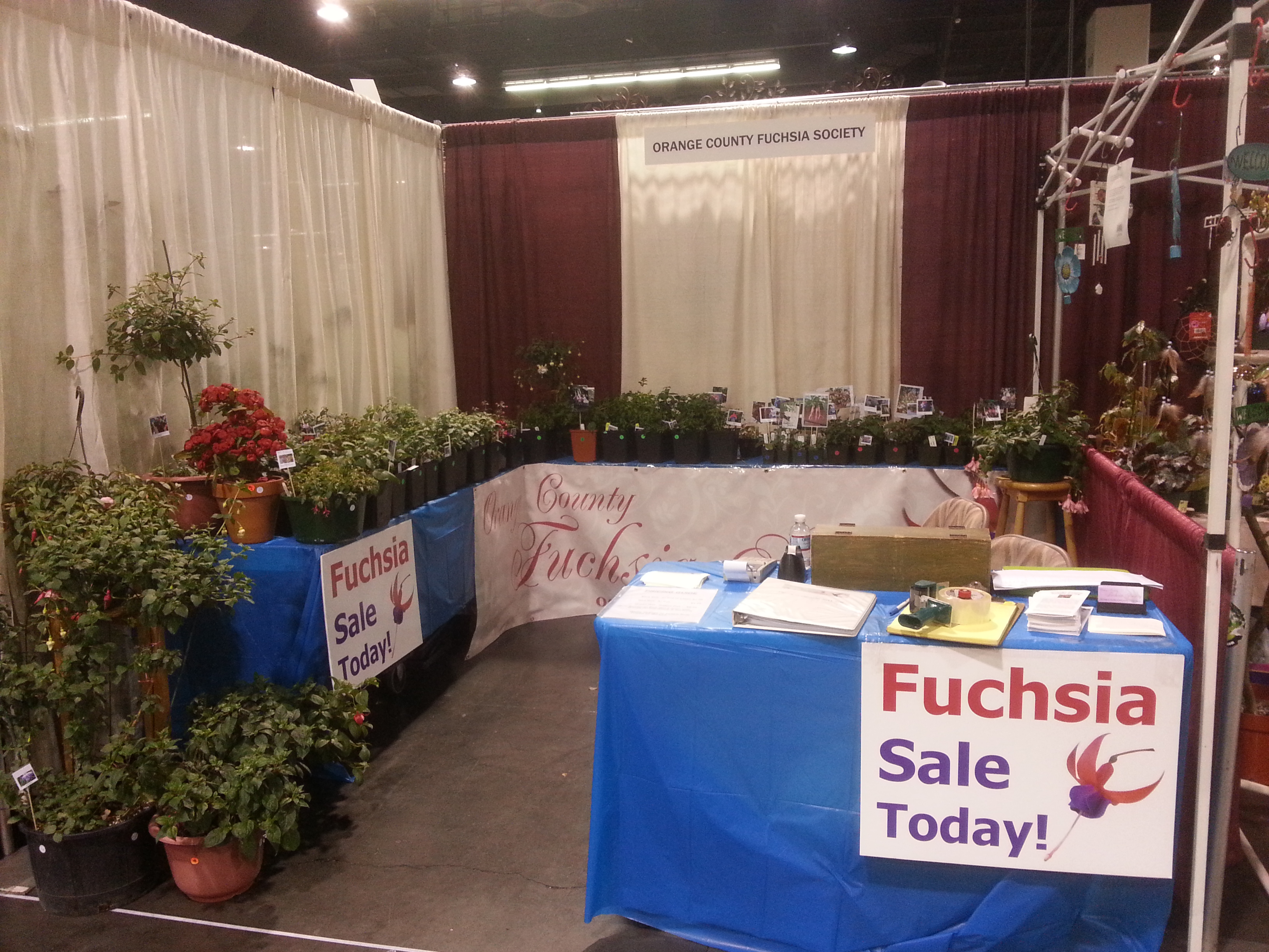 The Orange County Fuchsia Society Had, This Year For The First Time, A  Booth At The Anaheim Home And Garden Show At The Anaheim Convention Center  On May 3 5 ...